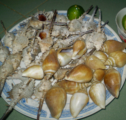 Oc gai mon ngon Phu Quoc