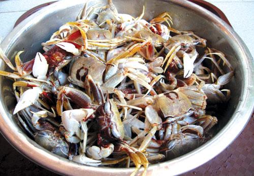 Thuong thuc mon cong chay