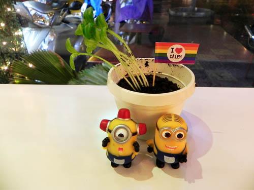 Chậu cây có thể ăn được ở Sài Gòn